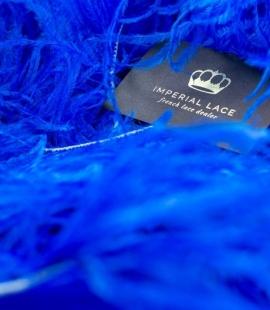 Karaliski zilas natur...