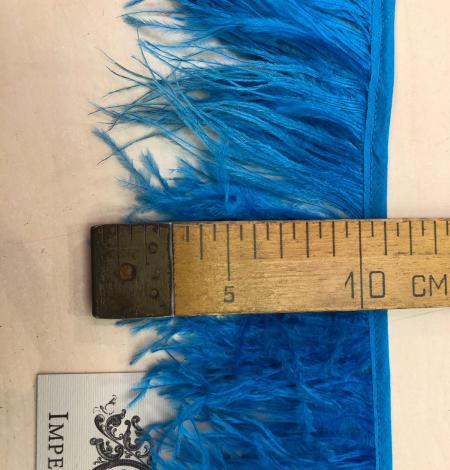 Koši zilas strausa spalvas. Photo 6