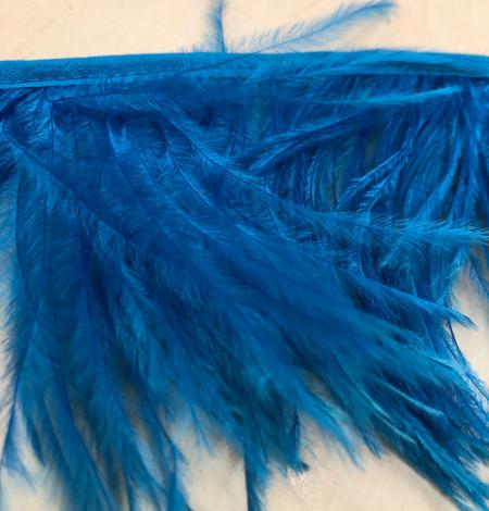 Koši zilas strausa spalvas. Photo 4