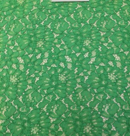 Apple Green Lace Fabric. Photo 2